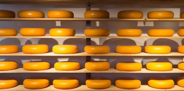 stacks of Cheese Wheels
