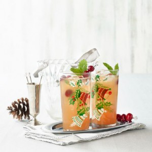 12_16_SW_Aprons_Holiday Drinks_Image 5