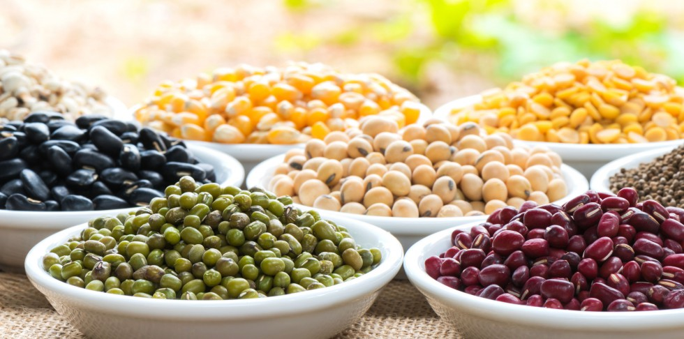 Creative Ideas to Help You Use Beans Better