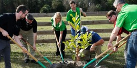 10_Arbor_Day_Featured_Image
