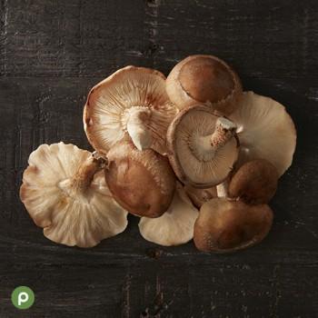04_CC_Mushrooms_Shiitake