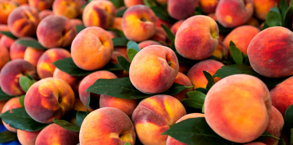 This Season is Just Peachy