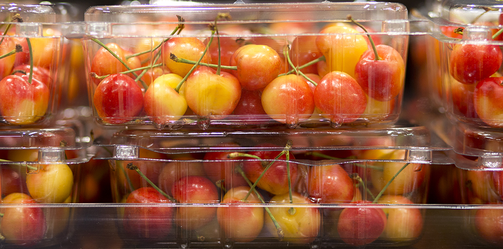 Your Complete Guide to Rainier Cherries