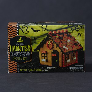 Publix Haunted Gingerbread Kit