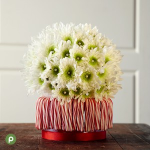 12_CC_HolidayCenterpieces_BodyImage_5