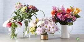 Publix Floral Arrangements