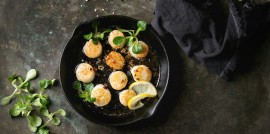 Scallops _ Featured Image