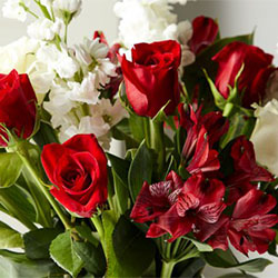 A Quick Guide to Holiday Floral Arrangements