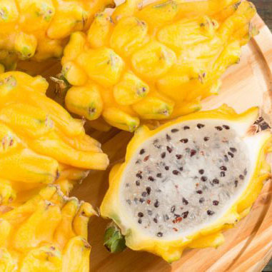 Check it Out: Yellow Dragon Fruit