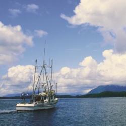 Seafood Sustainability