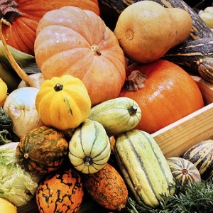 A variety of heirloom pumpkins stacked in a pile