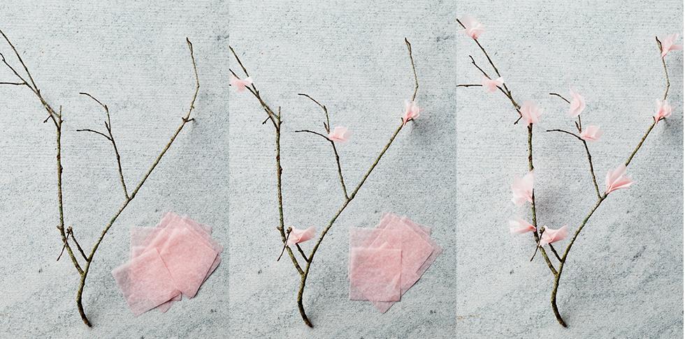 Cherry Blossom Step-by-Step DIY Craft