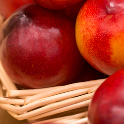 A Beginner's Guide to Fruit Storage